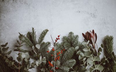 How to Balance Your Mental Health and Stress During the Holidays
