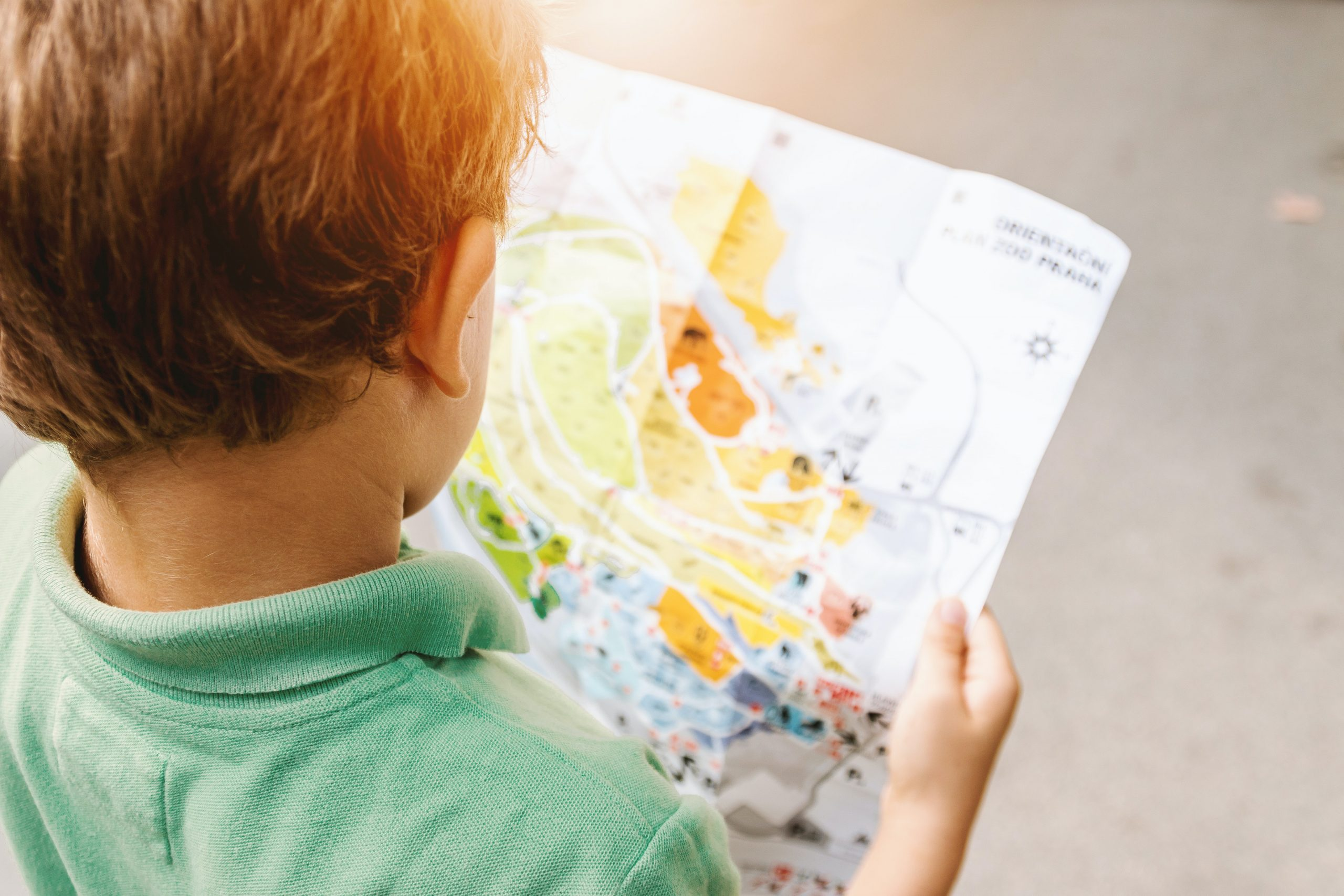 Gifted child looking at map after attending gifted testing and IQ testing in Simi Valley, Ca by Child Psychologist in Simi Valley, Ca